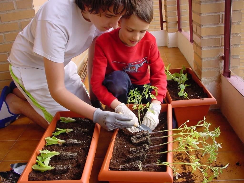 Jardiner a para ni os haz que conecten con la naturaleza for Manualidades de jardineria